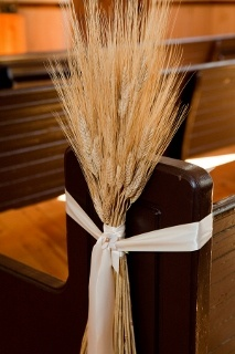 Bunches of Wheat for Wedding Decor